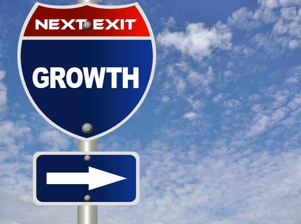 ERP Consultant Growth.jpg
